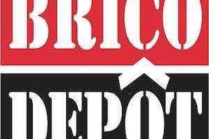 brico depot motoazada