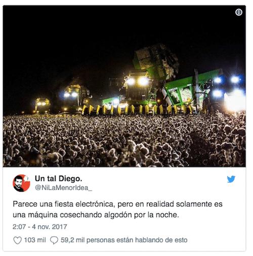 viral redes sociales granja o concierto